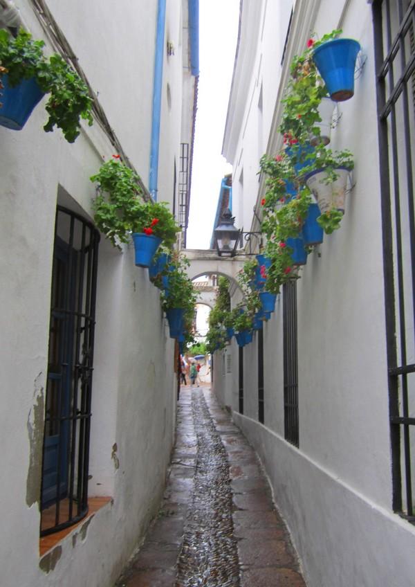 Cordoue callejon de los flores