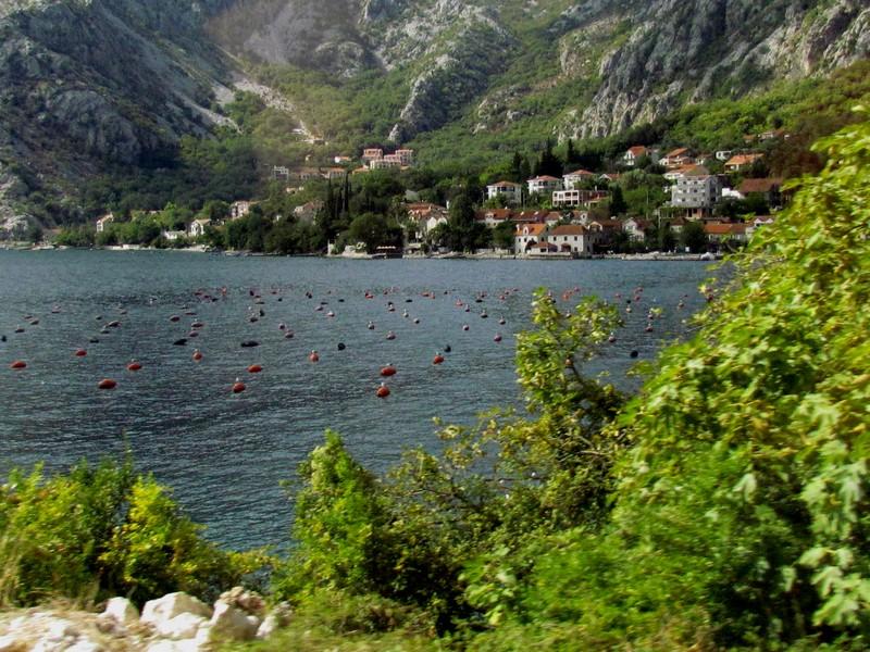 Montenegro baies de Kotor