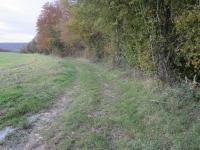 Chemin Giverdy2jpg
