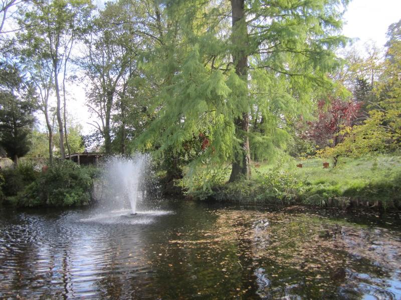 Lamorlaye jardin