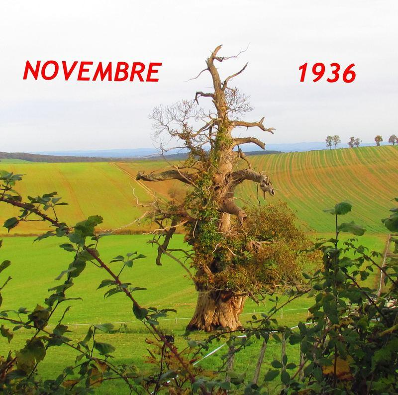 Novembre 1936